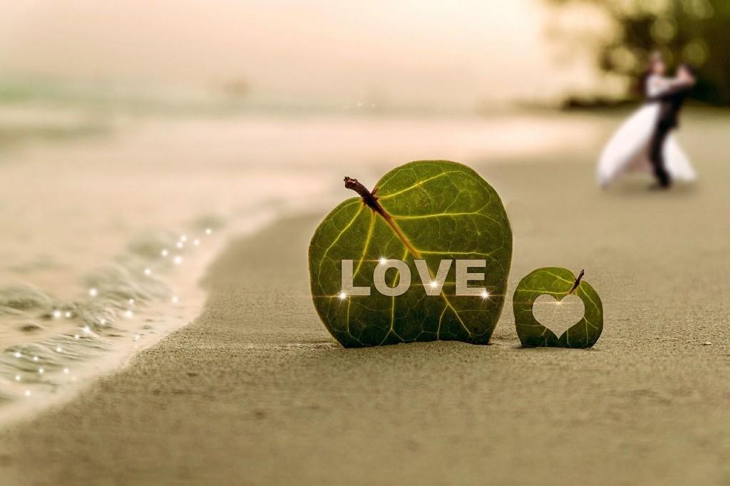 Pareja de hojas en la playa con la palabra amor